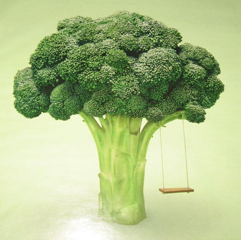 brokoli-yag-yaktiran-besinler