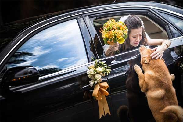 evlilik-fotograflari