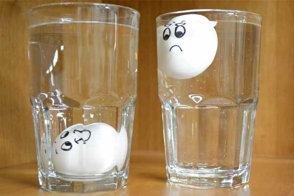 Yumurtanın Taze Olup Olmadığını Anlamanın Kolay Yolu