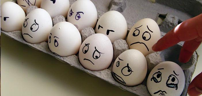 yumurta-hakkinda-bilinmesi-gerekenler