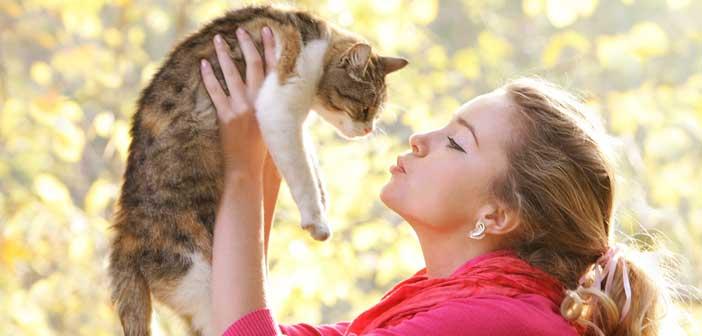 kedilerin-sagliga-faydalari