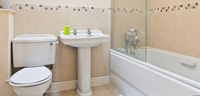 banyo-temizligi