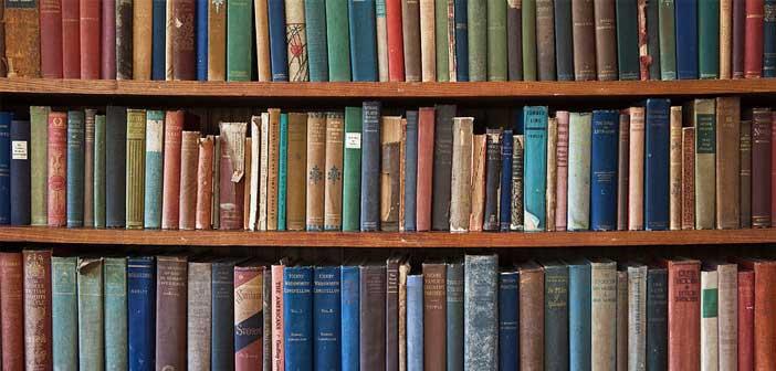 eski-kitap-boceklenme