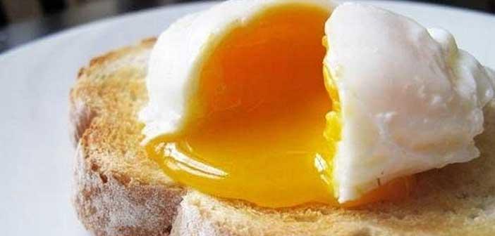 kayisi-kivami-yumurta