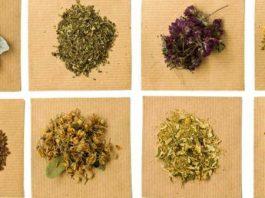 Sağlık İçin Temel Şifalı Bitkiler